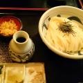 生醤油うどん - 実際訪問したユーザーが直接撮影して投稿した高田うどん讃岐うどん 蔵之介の写真のメニュー情報