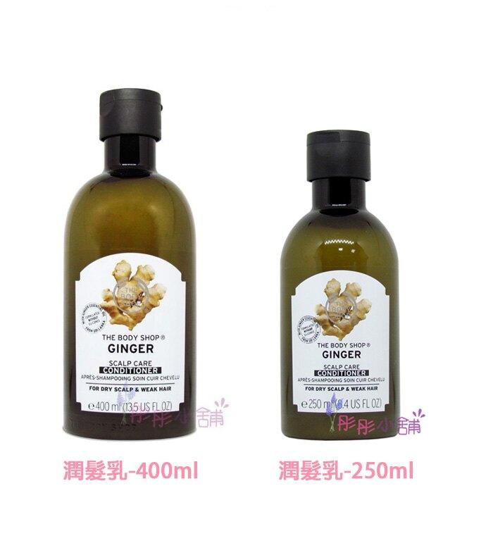 Ginger Scalp Care Shampoo / Ginger Scalp Care Shampoo 原廠真品輸入