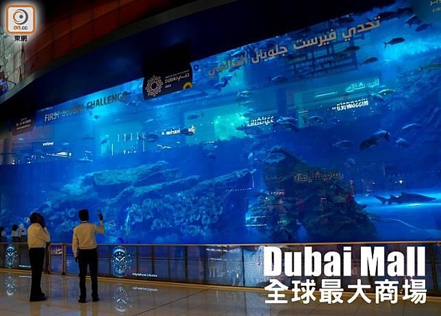 全球最大懸浮式水族館之一的Dubai Aquarium & Underwater Zoo,足足橫跨商場三層樓的高度。(單身旅子攝)