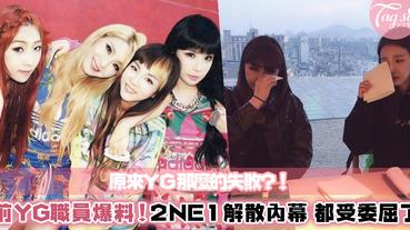 YG離職工作人員爆料!2NE1的解散是被弄的?列出5大點讓Black Jack一探究竟~