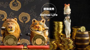 朝隈俊男Animal Life招財大貓系列!加碼超萌倉鼠存錢筒,全球限量300隻絕對必收~