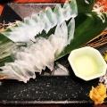 活き烏賊のお造り - 実際訪問したユーザーが直接撮影して投稿した西新宿魚介・海鮮料理イカセンター 新宿総本店の写真のメニュー情報