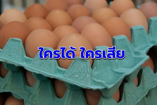 จับตาบริษัทยักษ์ใหญ่ผลิตไข่ไก่บุกไทย 'ใครได้ ใครเสีย'
