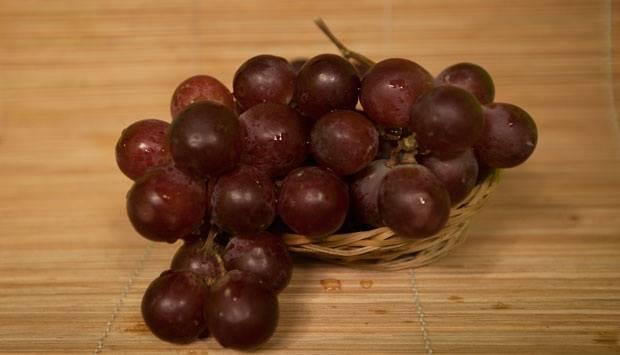 Ilustrasi buah anggur. TEMPO/Charisma Adristy