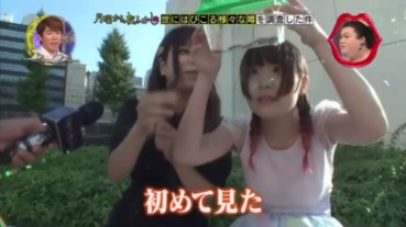 【有片】北海道民眾初見曱甴 反應太冷靜了吧...