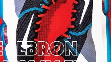 網友 Alex Chan 鞋評 / Nike Lebron Witness IV