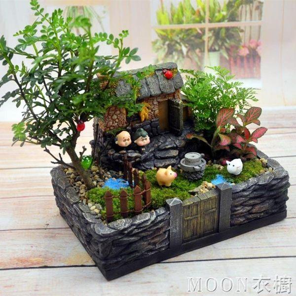 生態瓶 創意苔蘚微景觀生態瓶龍貓盆栽桌面辦公室DIY室綠植室內小植物 京都3C