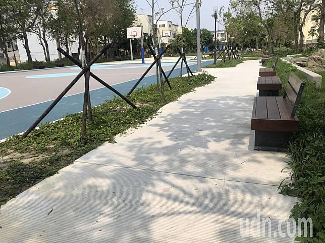 梁姓男街友上月29日上午被發現陳屍在湖東公園內。記者林敬家/攝影