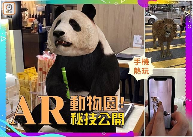 疫情期間忽然多咗人玩AR動物園,究竟實際點用手機玩?睇完內文自有分曉。