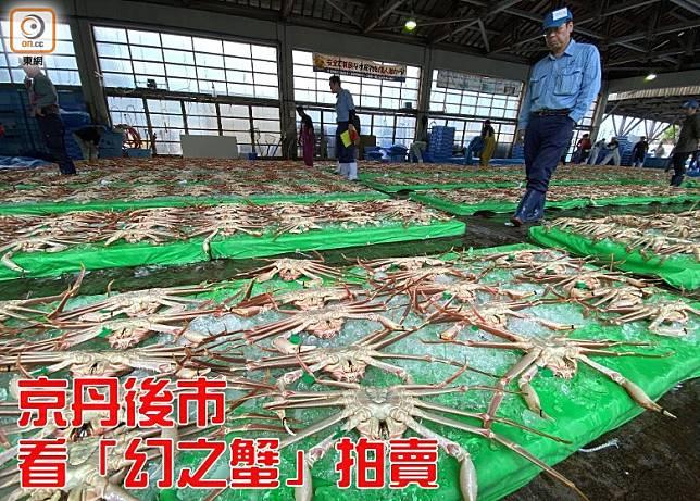 間人漁港是間人蟹唯一產地,蟹幾乎一登岸便給賣光光。(劉達衡攝)