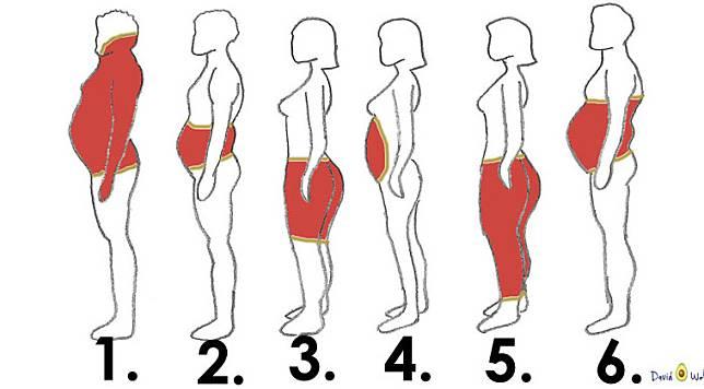 รูปร่างแบบไหนถึงเรียกว่าอ้วน!?