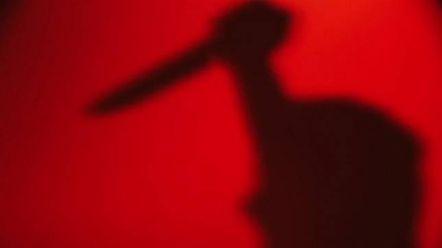 Kerap Dibandingkan dengan Mantan, Zakaria Tega Bunuh Tunangan