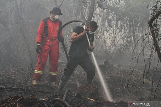 Riau diperkirakan alami kerugian Rp50 triliun akibat asap karhutla