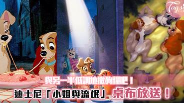 迪士尼「小姐與流氓」桌布放送!與另一半一同換桌布~低調地撒狗糧吧!