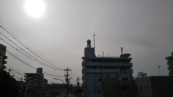 DSC_8953.JPG