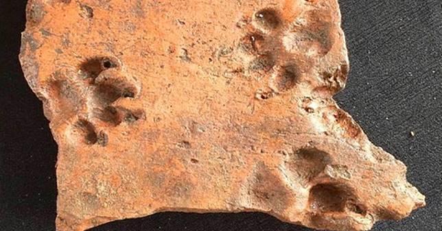 ไม่เชื่อก็ต้องเชื่อ เมื่อปัญหาสุนัขเดินเหยียบปูนไม่แห้ง มีมาตั้งแต่สมัยโรมัน