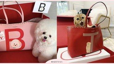 萌度破表!Valentino推寵物訂製托特包,手繪毛小孩可愛躍上包款!