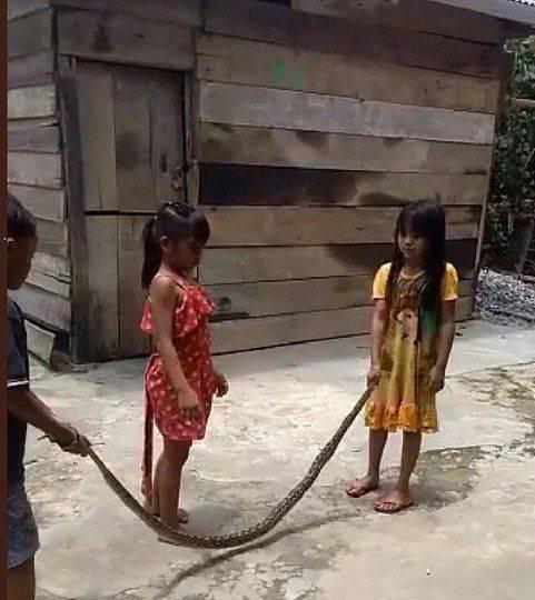 Bocah mainan lompat tali pakai ular sanca.