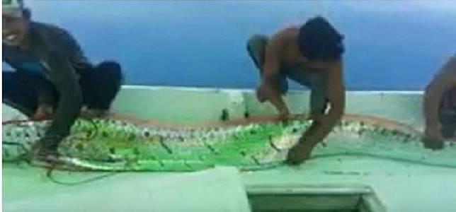 Ikan oarfish yang dikabarkan ditemukan nelayan di Selayar, Sulawesi Selatan dan diunggah di Youtube, 8 Desember 2019. (youtube.com/anditenry)