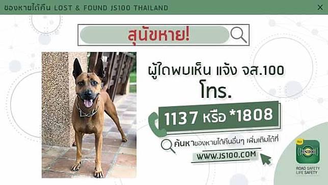 สุนัขหายจากซอยทวีวัฒนา - กาญจนาภิเษก 31 เขตทวีวัฒนา ผู้ใดพบเห็นแจ้ง JS100 โทร. *1808 หรือ 1137