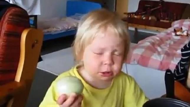 Bocah makan bawang bombai yang ia kira apel ini bikin ketawa (Facebook/Gesa Croonen)