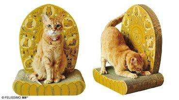 膜拜吧!鏟屎官~日本Felissimo推出「佛系貓咪打坐椅」!超顯主子威猛氣勢,快來成為「貓咪教」的信徒吧!