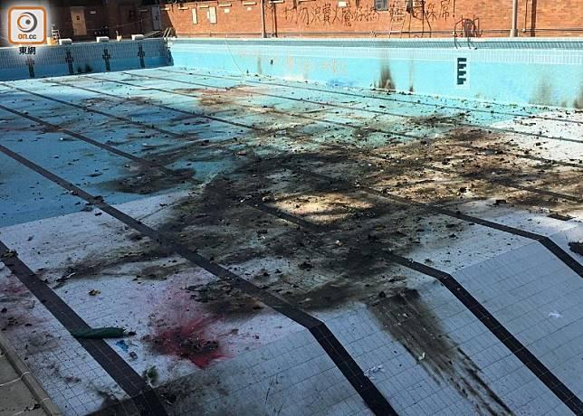 泳池底部被烈火燒成焦黑。(區慧盈攝)