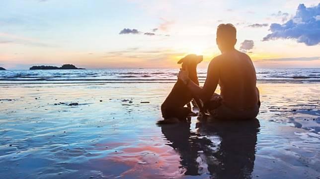 Menikmati sunset di pantai bersama anjing kesayangan. Sebagai ilustrasi [Shutterstock].