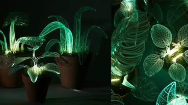 以後就不用買小夜燈啦~融合燈具的小植栽真的好可愛喔!