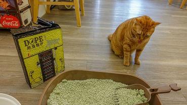 《榮登愛用貓砂寶座NO.1.DOPE超強貓砂》可沖馬桶可食用!! 貓奴群討論度最高的超省量貓砂 無粉塵環保豆腐砂