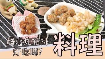 【料理】自製便當,mini 迷你 料理第五彈-蔬菜豬肉排/丸 便當。