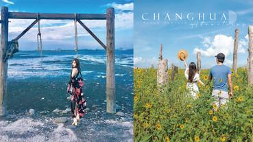 彰化超好拍景點「福寶濕地」!向日葵花海+漂流木裝置,還可欣賞超美夕陽~