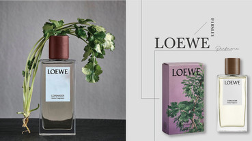 LOEWE「香菜香氛」超狂登場,完整呈現自然香菜味!加碼精品「香菜香水清單」推薦~