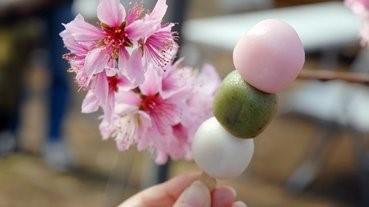 賞花vs美食!男性果然是視覺系?