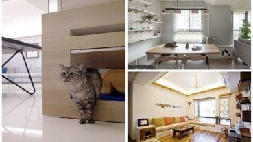 貓奴必看!不怕異味、美觀實用,12款「貓砂盆」結合居家設計大公開!