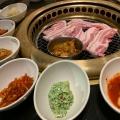 サムギョプサル - 実際訪問したユーザーが直接撮影して投稿した大久保韓国料理でりかおんどる 新大久保2号店の写真のメニュー情報