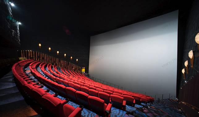 IMAX影院有8層樓高,超闊屏幕投影的畫面一定非常震撼。(網上圖片)