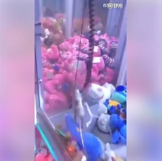 Kesal Tak Pernah Dapat Boneka dari Mesin Cakar Mainan? Begini Cara Liciknya!