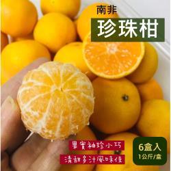 【水果行家】南非珍珠柑_單盒1公斤*6盒入/箱