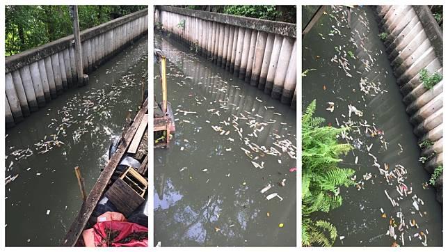 泰國曼谷一處運河水面上,竟飄著數百個用過的保險套。(圖/翻攝自臉書)