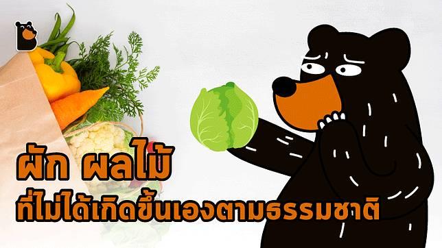 รู้หรือไม่ ผัก ผลไม้ที่เรานิยมทาน หลายชนิดไม่มีในธรรมชาติ แต่เกิดจากการสร้างสรรค์ของมนุษย์