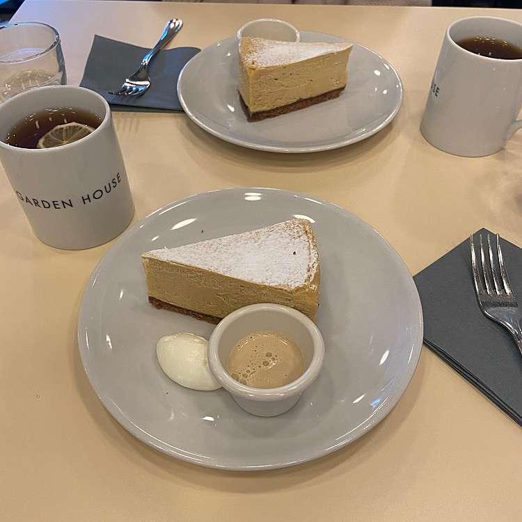 ユーザーが投稿したほうじ茶チーズケーキの写真 - 実際訪問したユーザーが直接撮影して投稿した新宿カフェGARDEN HOUSE Shinjukuの写真