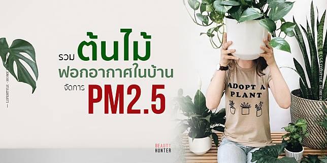 PM 2.5 หลบไป!