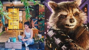 原來台灣也有浣熊咖啡廳,還跟復仇者聯盟裡面那隻一樣,叫 Rocket!