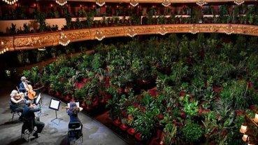 史無前例!巴塞隆納防疫期間舉辦音樂會,現場觀眾是 2292 棵植物盆栽座位爆滿!