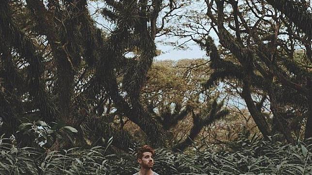 6 Hutan di Jawa Timur yang Berikan Sensasi Berpetualang Layaknya dalam Film Fantasi