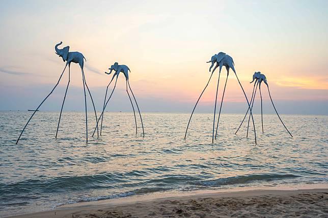 海上遷徙的大象。