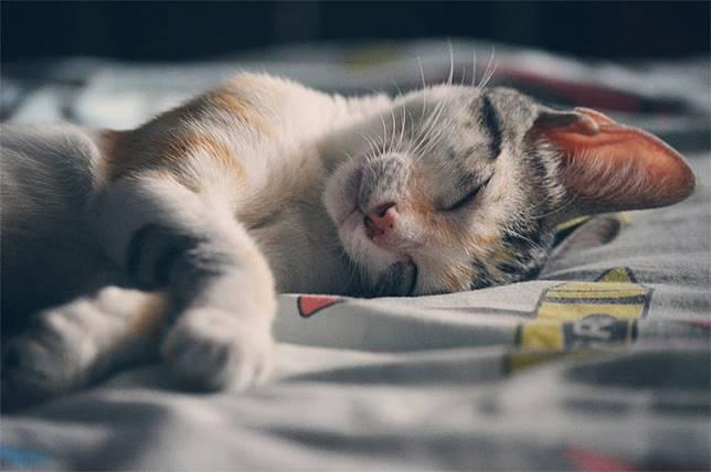 5 เคล็ดลับ ที่จะทำให้คุณหลับเต็มอิ่ม – เพียงแค่จัดตารางเวลาให้เหมาะสม