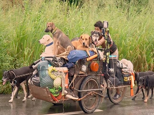 為了愛 男子推三輪車徒步環遊墨西哥拯救近500隻流浪狗