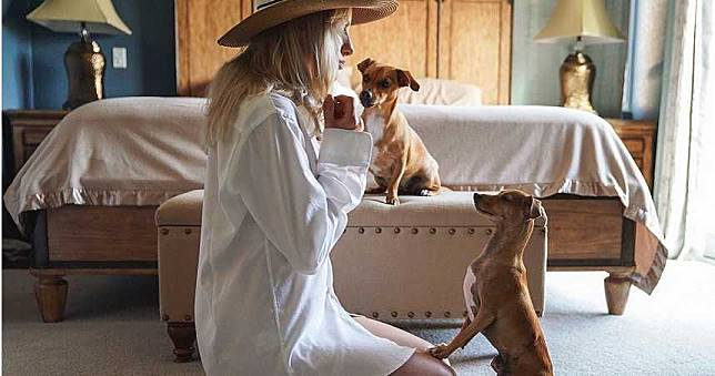 狗狗感染新冠肺炎首例?驗出「弱陽性」 傳飼主是確診女富商